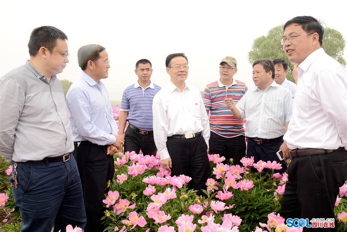 图为侯晓春一行在亳州亳药花海大世界及亳州中药材种植基地考察.